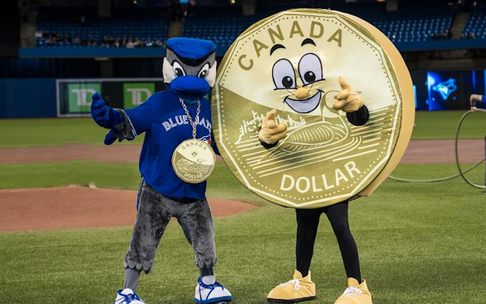 Rogers Centre Looney Dog Night